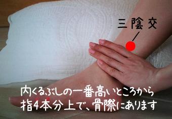 福岡の不妊治療の鍼灸
