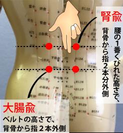 坐骨神経痛に効くお灸のツボ
