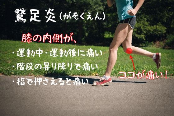 鵞足炎の鍼灸治療