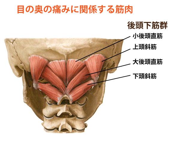目の奥の痛みの鍼灸治療