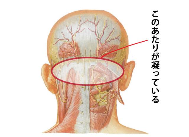 頚性めまいと鍼灸治療