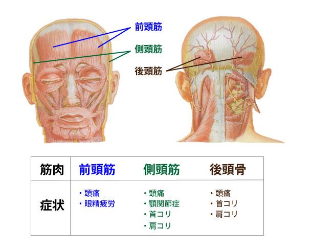 ツボ 後頭 神経痛